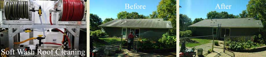 Soft Wash Roof Cleaning by Absolutely Clean Window Washing