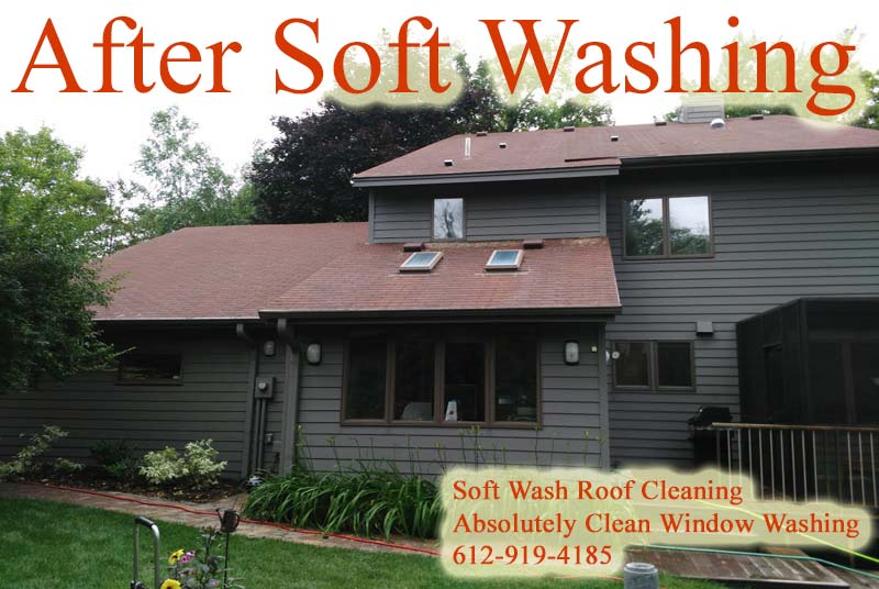 Mn roof cleaning soft wash black roof stain removal minneapolis mn - Reasons get roof cleaned ...