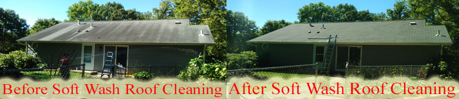 Wisconsin Soft Wash Roof Cleaning Service Area Wi Roof